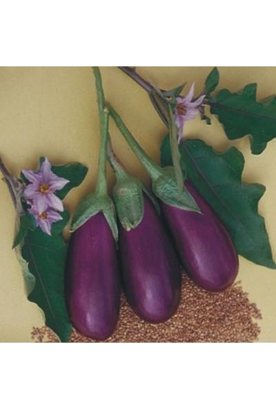 Çam Tohum Antep Kurutmalık Dolmalık Patlıcan Tohumu Eko Paket 300'Lü