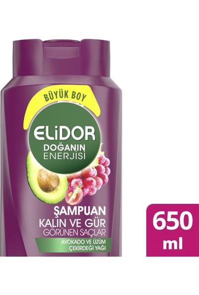 Elidor Doğanın Enerjisi Kalın ve Gür Saçlar Avokado Özlü Saç Bakım Şampuanı 650 ML