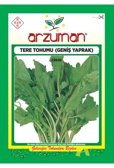 Arzuman Tere Otu Sebze Tohum Geniş Yaprak 10 gr