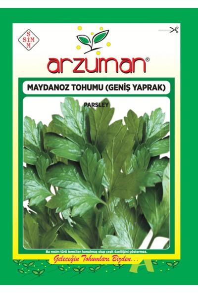 Arzuman Sebze Geniş Yaprak Maydonoz Tohum 25 gr