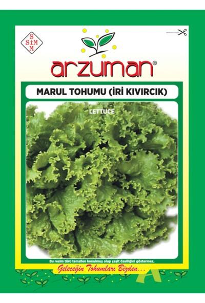 Arzuman Sebze İri Kıvırcık Marul Tohum 10 gr