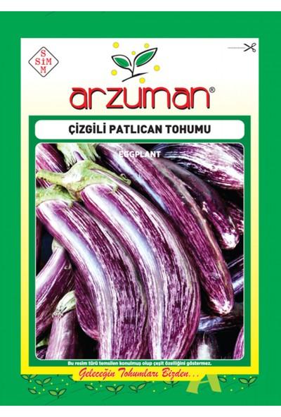 Arzuman Patlıcan Sebze Tohum Çizgili 5 gr