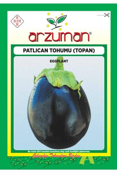 Arzuman Sebze Patlıcan Tohum Topan 10 gr