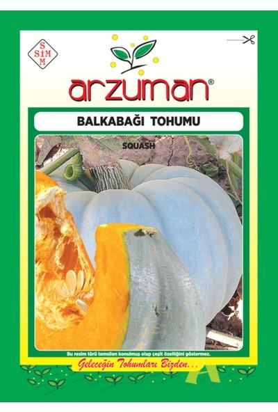 Arzuman Arıcan 97 Balkabağı Tohum 10 gr