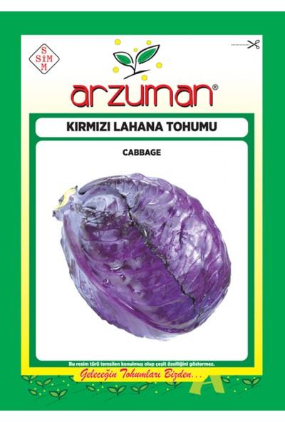 Arzuman Sebze Kırmızı Lahana Mor Tohum 10 gr