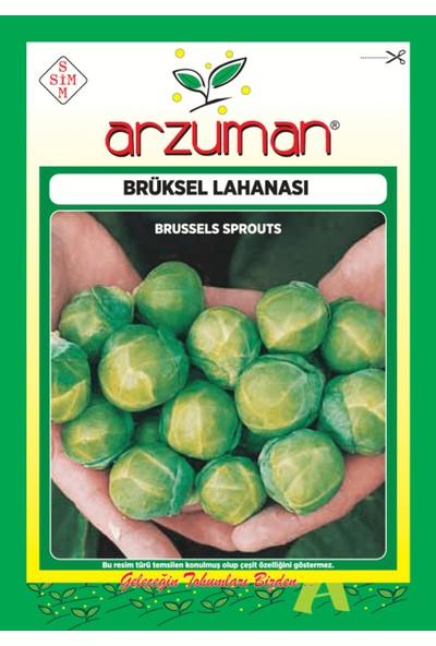 Arzuman Sebze Brüksel Lahana Tohum 10 gr