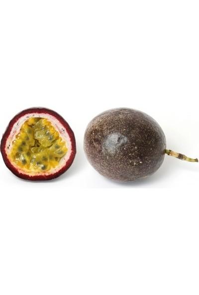 Chef's Garden - Passion Fruit Çarkıfelek 2'li