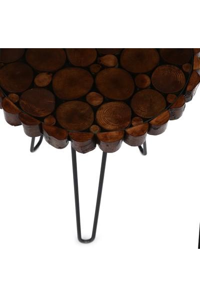 Dfn Wood Doğal Ahşapmetal Ayaklı Dekoratif 3'lü Zigon Sehpa