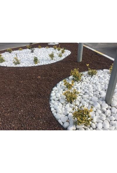 Ekodoğa Beyaz Dolomit Taşı 40 kg 4 - 6 cm Bahçe Taşı Dekoratif Taş Dere Taşı Dolomite Doğal Taş Beyaz Süs Taşları