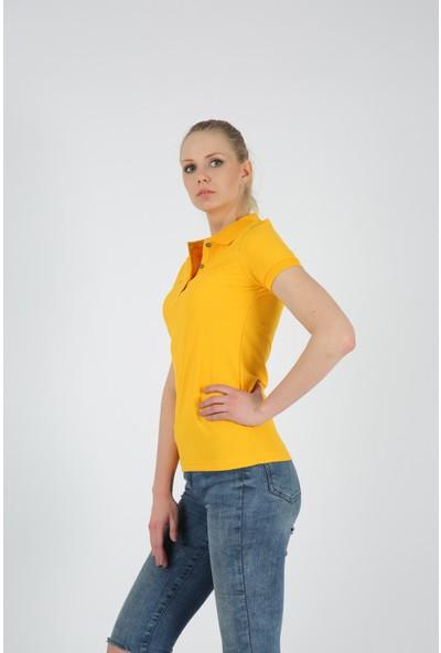 Dafron Kadın Polo Yaka T-Shirt
