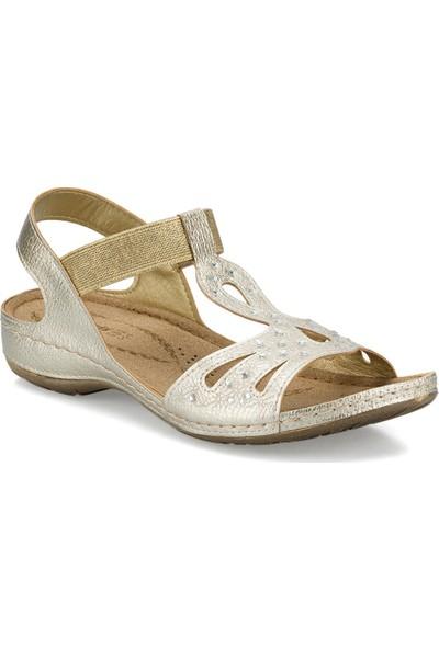 Polaris 161131.Z Altın Kadın Sandalet
