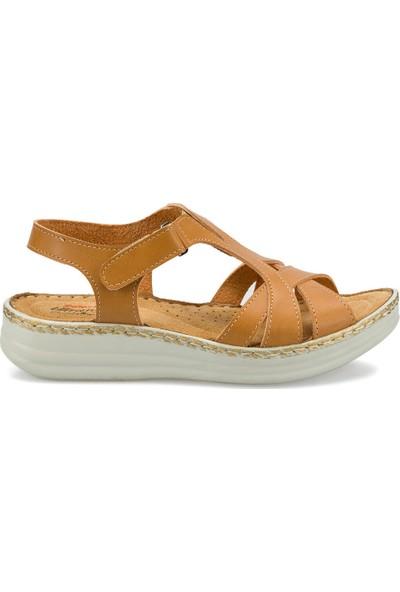 Polaris 161176.Z Taba Kadın Sandalet