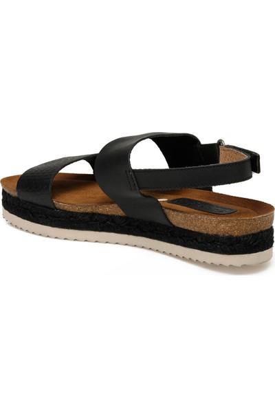 Vıtello Kadın Sandalet (816) Siyah Kadın Sandalet