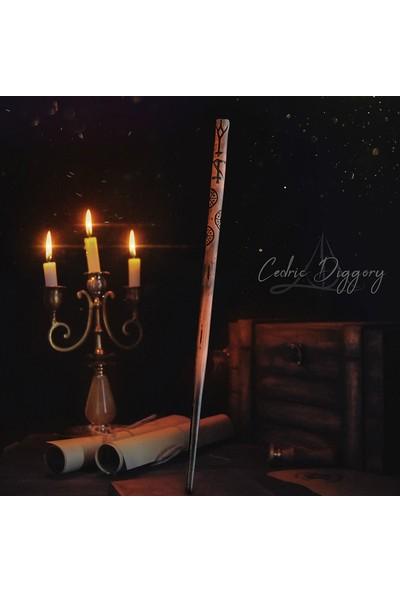 Büyücü Sokağı Triwizard Asa Seti Üç Büyücü Turnuvası Harry Potter