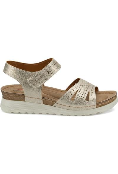 Polaris 161167.Z Altın Kadın Sandalet