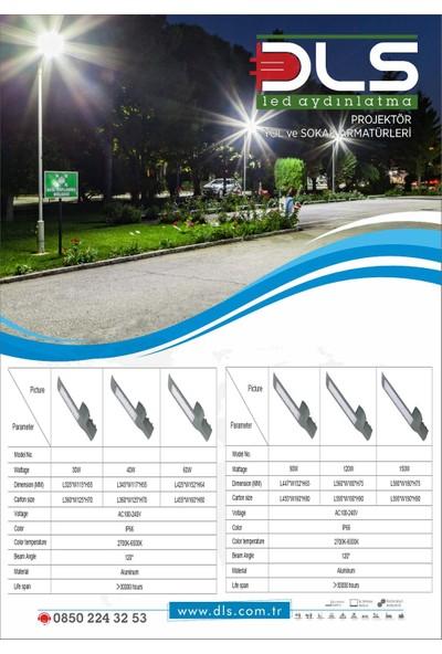 DLS LED Sokak Armatürü Sokak Lambası 30 W 5 ADET