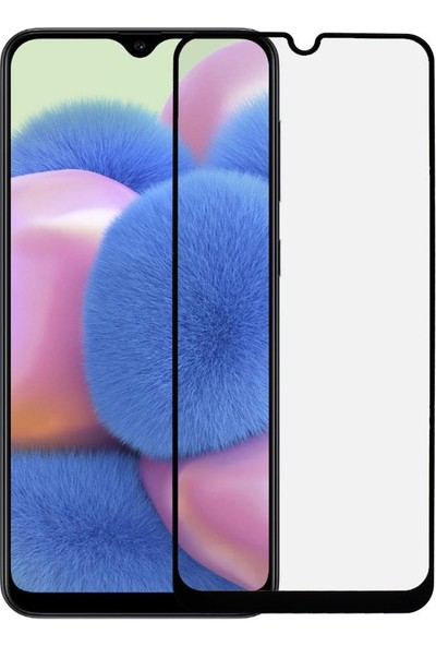 Microlux Samsung Galaxy A30S Ekran Koruyucu Seramik Nano