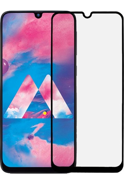 Microlux Samsung Galaxy M30 Ekran Koruyucu Seramik Nano