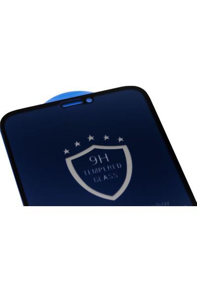 Microlux iPhone 11 Pro Ekran Koruyucu Gizli Hayalet Cam 9D Tam Kaplama