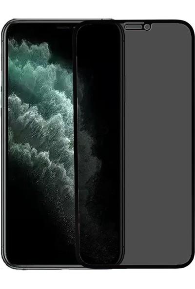 Microlux iPhone 11 Pro Max Ekran Koruyucu Gizli Hayalet Cam 9D Tam Kaplama