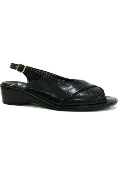 Comfi 3534 Siyah Comfort Kadın Sandalet