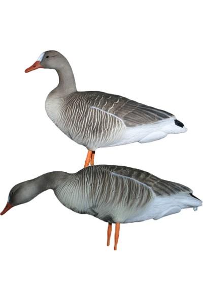 Dr Duck Tarla Kaz Mühre 3 Dik - 1 Yemlenen