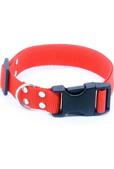 Petviya Ayarlanabilir 33-54 cm Kırmızı Köpek Boyun Tasması