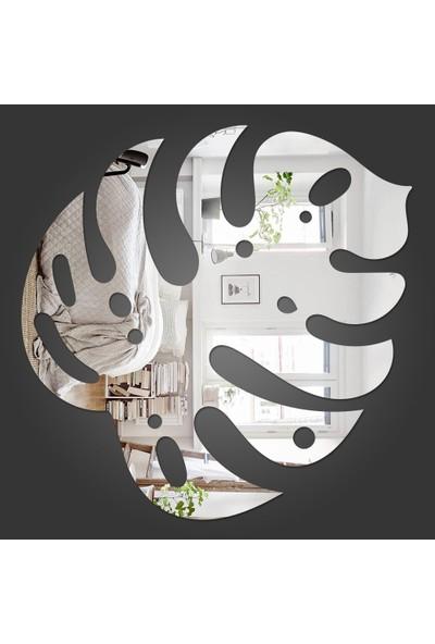 Dez Yeni Dekoratif Duvar Aynası (Adams Rıb Çiçeği)