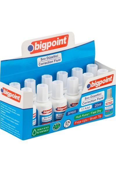 Bigpoint Sıvı Silici 20 ml 12'li Kutu