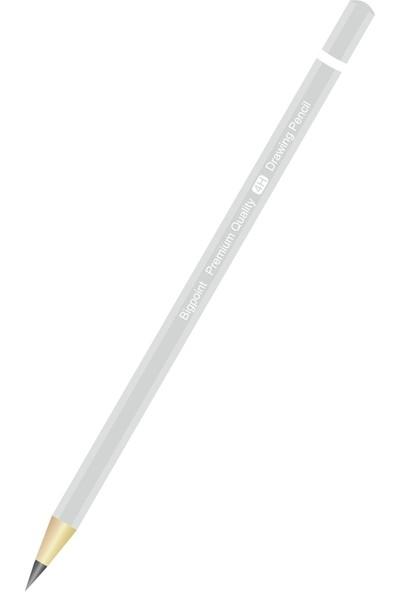 Bigpoint Dereceli Kalem 4H 12'li Kutu