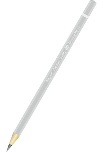 Bigpoint Dereceli Kalem 2H 12'li Kutu