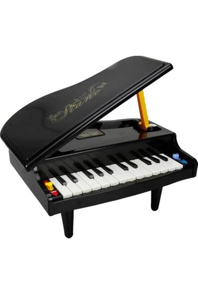 Sunman Işıklı Piyano 24 Tuşlu