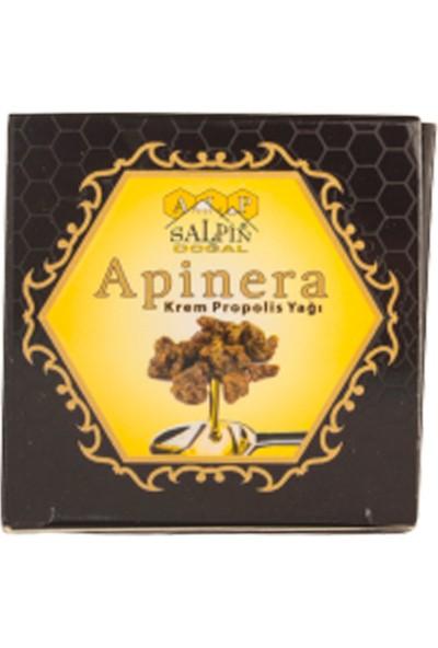 Salpin Apinera Krem Propolis Yağı Cilt 40ML