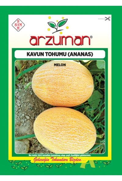 Arzuman Ananas Kavun Tohumu 10 G