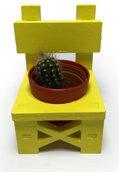 Hk Dekor Lora Sandalye Çiçeklik Saksı - Sarı