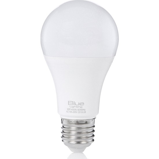 Blue Lighting 9 W A60 Led Ampul Gün Işığı