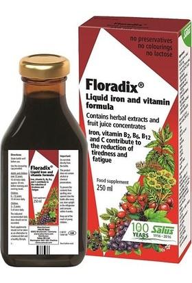 Floradix Şurup 250 ml 2 Adet