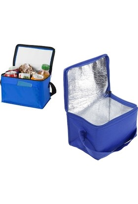 Ankaflex Soğutucu Kamp Piknik Çantası Termos Soğuk Tutucu Çanta Termos