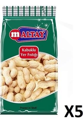 Maltay - Kabuklu Fıstık 110gr 5 Adet Kutusu