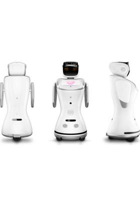 Sanbot Insansı Robot Bulut Tabanlı Yapay Zeka