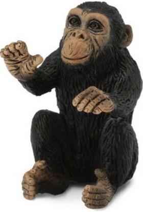 Collecta Yavru Şempanze
