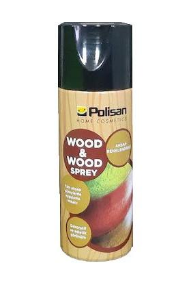 Polisan Ahşap Renklendirici Wood & Wood Sprey 173 Siyah