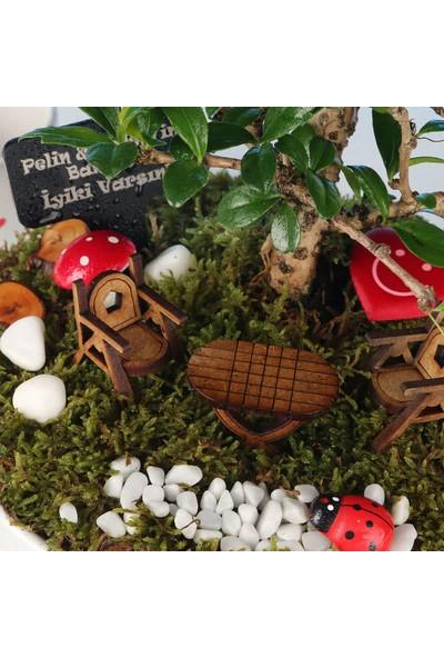 Hediye Sepeti İsme Özel Bonsai Ağaçlı Mini Bahçe