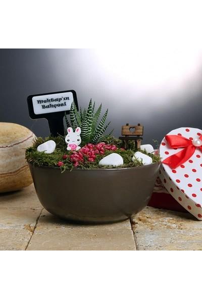 Hediye Sepeti Kişiye Özel Canlı Bitki Minyatür Bahçe