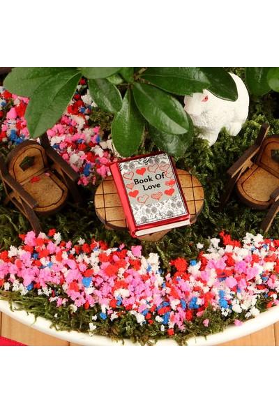 Hediye Sepeti Sevgiliye Hediye Mutlu Çiftler Canlı Minyatür Bahçe