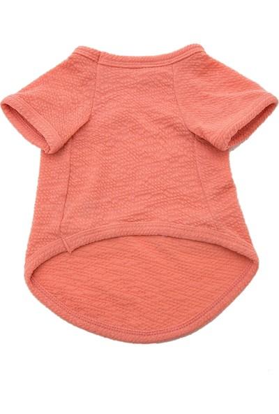 Chili Lacesomon Köpek T-Shirt L