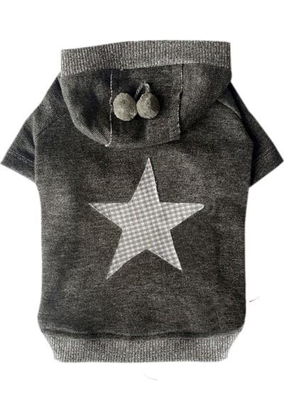 Chili Star Köpek SweaT-Shirt XL