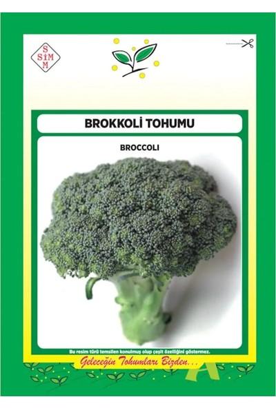 Ekodoğa Brokoli Tohumu 1 Paket (200 Adet Tohum) Tohum Sebze Tohumu Brokoli Tohumu Sebze Tohumları