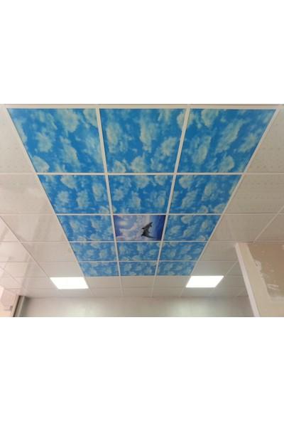 Evim PVC Asma Tavan Paneli Bulut TR08-1