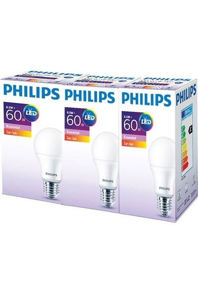 Philips Ess LED 8.5-60W Sarı Işık Normal Duy 3'lü 919933002138